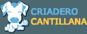 Élevage de chiens en Cantillana – Séville – Spagne |Criadero Cantillana